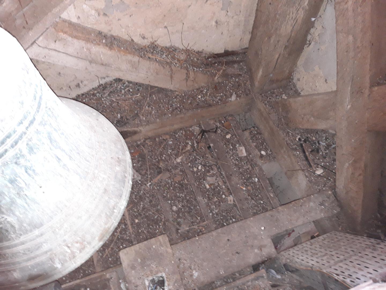 habitation impacté par les pigeons 2.jpg